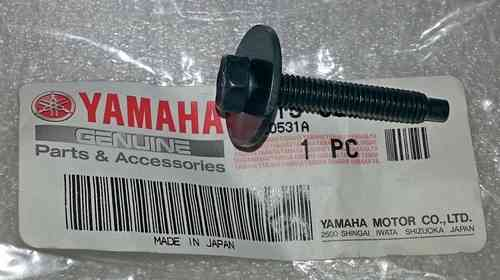 Tank Fixing Bolt and Washer - Blue tanks - Genuine Yamaha part
