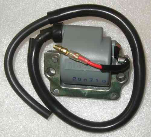 Ignition coil for TTR250