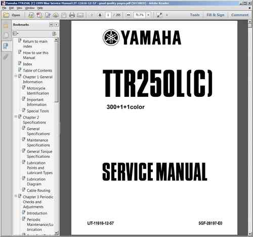 Service / workshop manual for blue plastic-tanked TTR250s