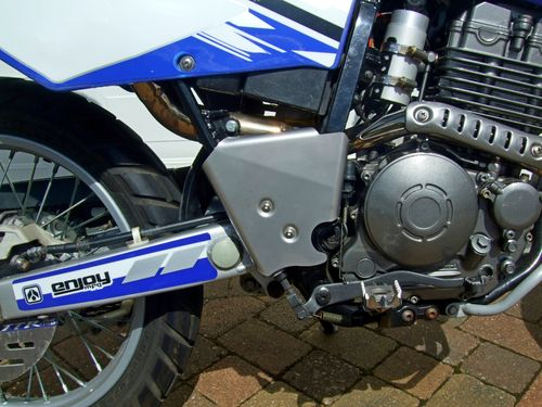 Frame guards for TTR250 - stainless steel with fixings